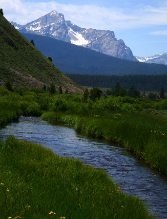 Stanley Creek as it flows through high mountain meadow,Sawtooth Mountains in background, Stanley Idaho Reklamní fotografie