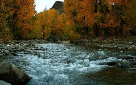 Autumn on the Big Wood River, Idaho