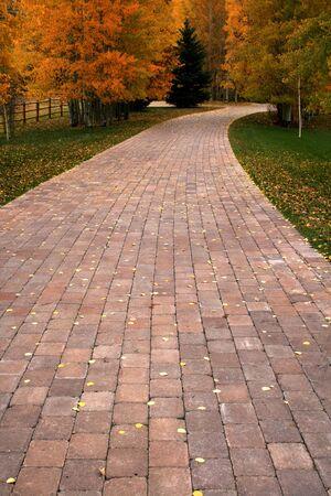 Brick pathway dissapearing into autumn,fall in Idaho