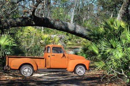 rusty: 54 Pickup Truck in the wilderness near a fallen tree. Stock Photo