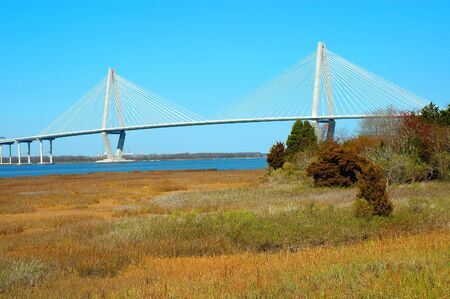 cooper: Arthur J. Ravenel bridge spanning the beautiful Cooper River in Charleston, South Carolina. Stock Photo