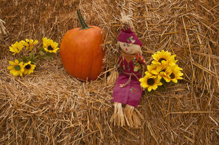 Pumpkin with small scarecrow and sun flowers on a bail of hay to reflect the Halloween season or harvest time. photo