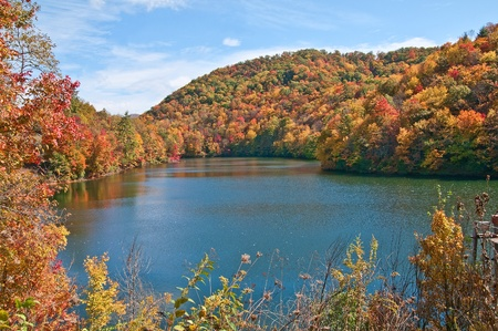 reds: A hidden jewel in the Smokey Mountains of North, Carolina