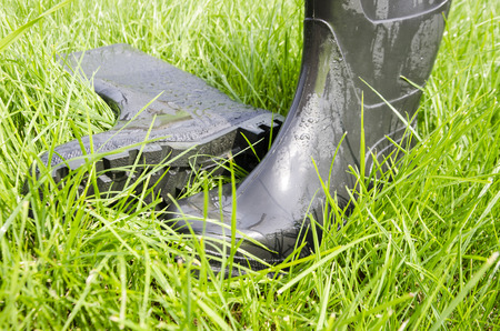dirtied: Wet rubber boots on green lush grass