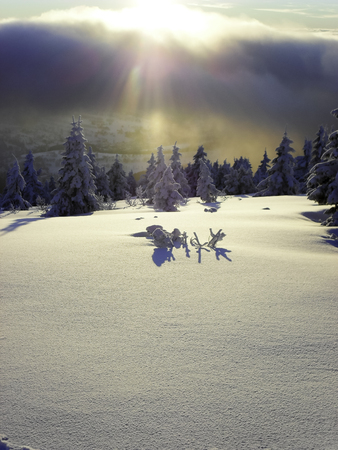 Skiing Expedition. Sunny weather in the land of ice. Stock Photo