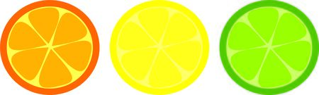 citrus fruits in green, yellow and orange. vector illustration on white background.