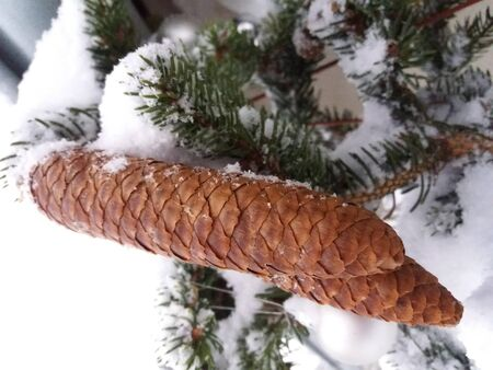 Snowy Christmas Decoration Twig with the Cone
