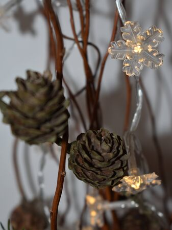 Christmas Decorated with Lights and Cones on White Background