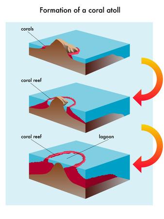 debris: coral atoll