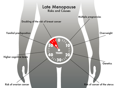 ovarian cancer: late menopause
