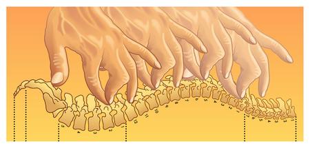 chiropractic Illusztráció