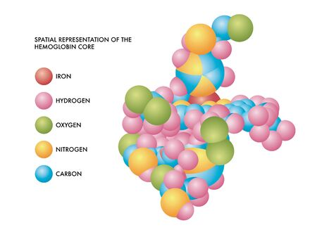 Medical illustration of hemoglobin core spatial representation with molecules of iron, hydrogen, oxygen, nitrogen and carbon in color coded shapes.