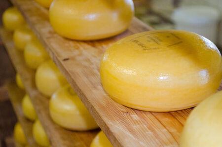 Cheese shelves photo
