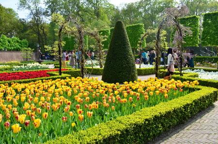 blosom: Keukenhof garden, Netherlands -May 10: Colorful flowers and blossom in dutch spring garden Keukenhof which is the worlds largest flower garden. Keukenhof Garden, Lisse, Netherlands - May 10, 2015