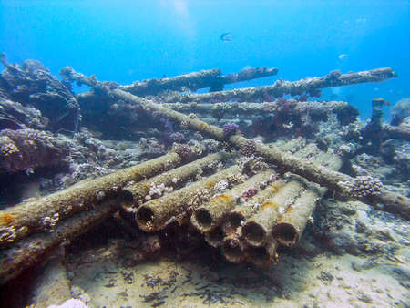 Cargo from the wreck of the Yolanda at the tip of the Sinai Peninsula in Egypt