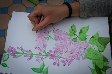 young teenage girl using watercolour pencils in the garden painting lilac plant.. hobby pastime. Banque d'images
