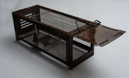 Live mouse trap brown cage on white