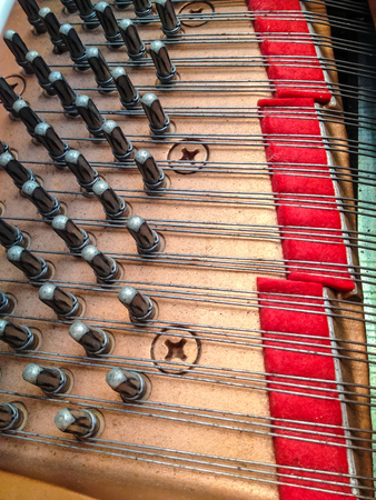 wire pin: Pin and wire of the grand piano