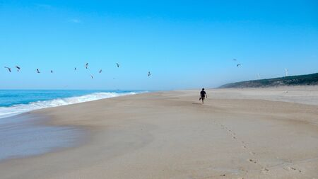 Single man solo traveller walking on rhe shore of the ocean beach with group of seagull in the blue sky - Praia do Norte Portugal Foto de archivo