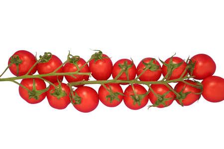 孤立した熟したチェリー トマト。