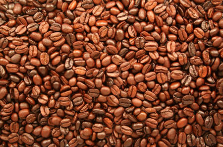percolate: Rich coffee beans. Stock Photo