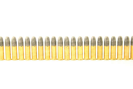 calibre: A line of 22 calibre bullets isolated against a white background.