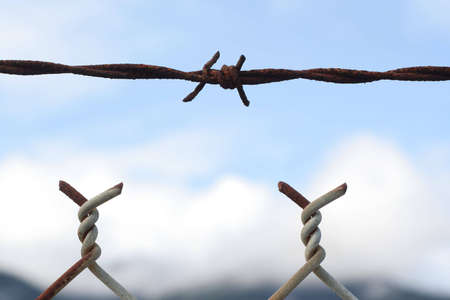 barbed wire fence: A small section of a barbed wire fence.