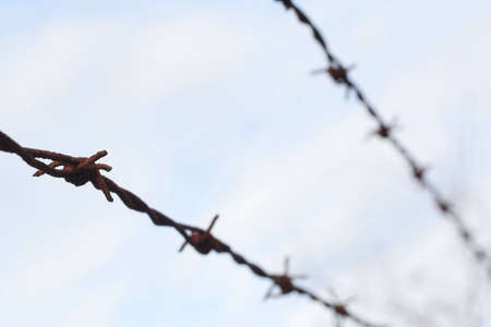barbed wire fence: A barbed wire fence fading out of focus.