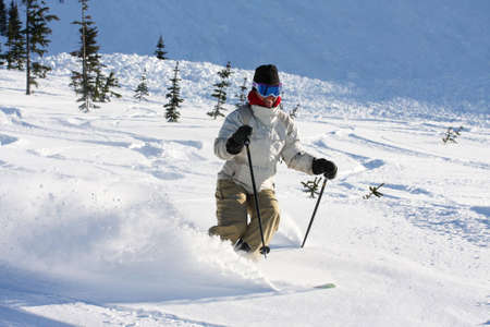 A skier descends a trail on Whistler Mountain. Stock fotó