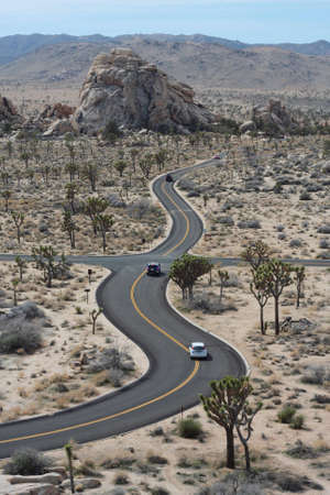 Driving in a meandering road in the Joshua Tree National Park, California, US. photo