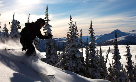 canada: A skier glides through fresh powder on a sunny day. Stock Photo