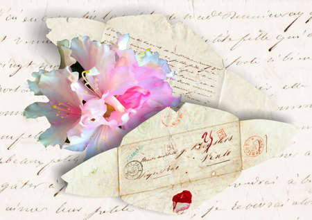 nostalgia, Old letter from 1885 with envelpoe and rhododendron flower photo