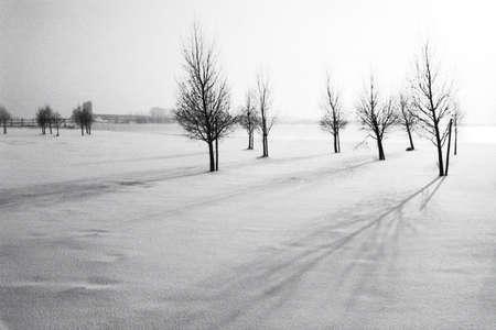 styczeń: snowlandscape w Holandii Zdjęcie Seryjne