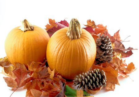 Pumpkins, Pinecones and Fall Leaves
