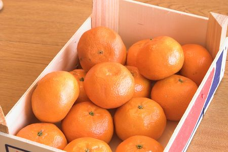 florida citrus: clementines Stock Photo
