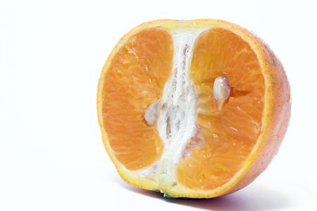 Orange Cross Section Imagens - 890993