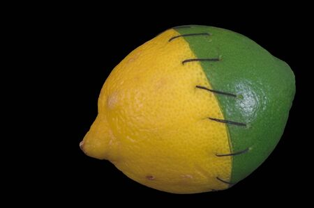 genetically: A lemon and a lime stitched together. Stock Photo