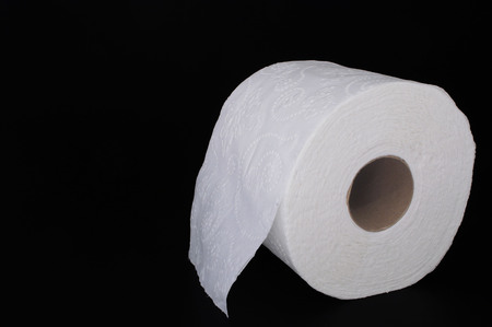 ply: A new roll of white 2 ply toilet paper. Stock Photo