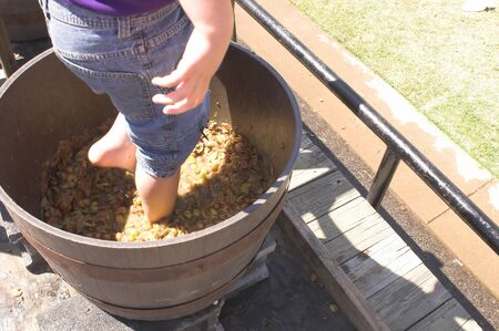A boy stomping grapes to make wine.