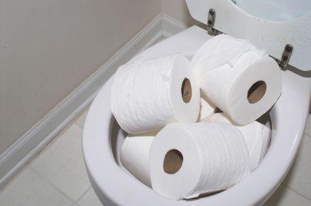 너무 많은 종이로 가득 찬 화장실.