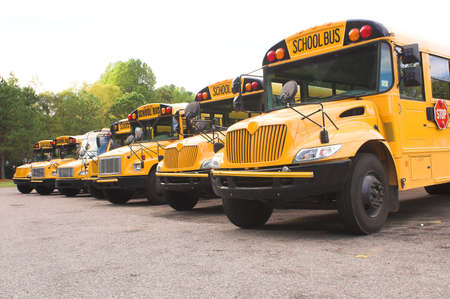 school buses: A row of school buses in a parking lot. Stock Photo
