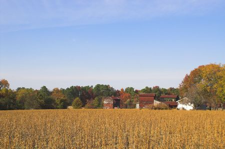 An old farm in the autumn part of the year. Stock Photo - 2105863