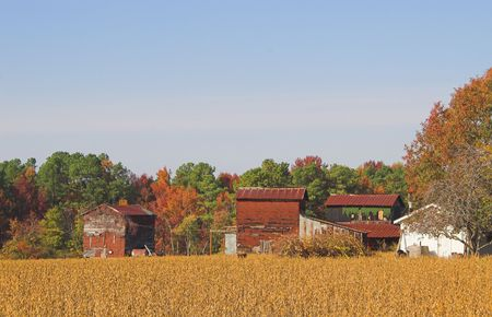 outbuilding: An old farm in the autumn part of the year.