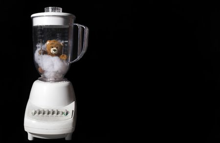 appliance: A tender and delicious gourmet Teddy Bear in a blender.