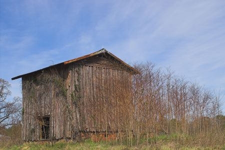 Agriculture History - An old abandoned tobacco barn. Stock Photo - 2732063