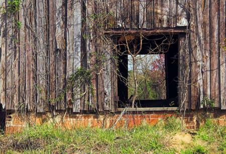 outbuilding: Agriculture History - An old abandoned tobacco barn.