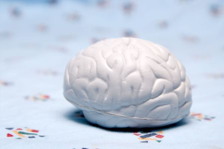 A rubber model of a brain on a hospital gown. photo