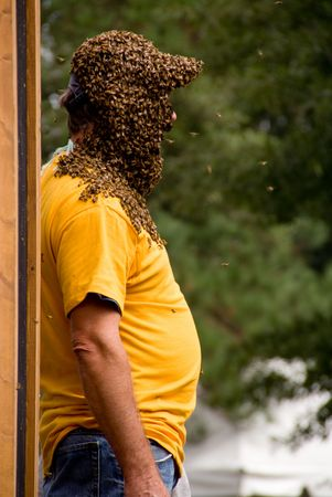A bee keeper covered in a swarm of honey bees.