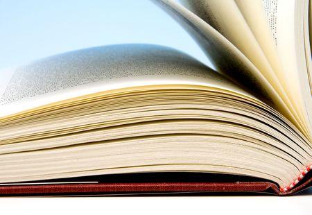 phrases: Un libro lleno de palabras y frases.