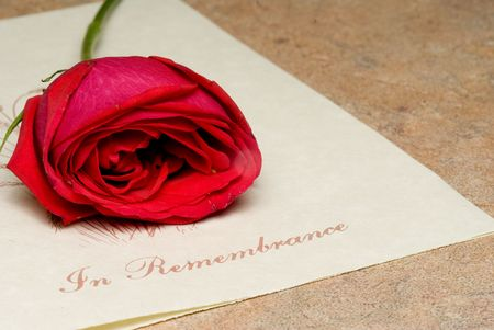 A funeral bulletin with a single red rose. Stock Photo